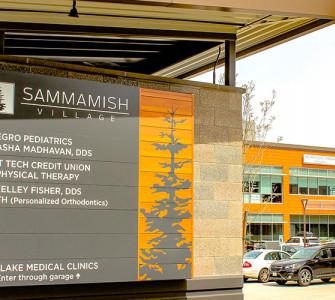 Image of Sammamish